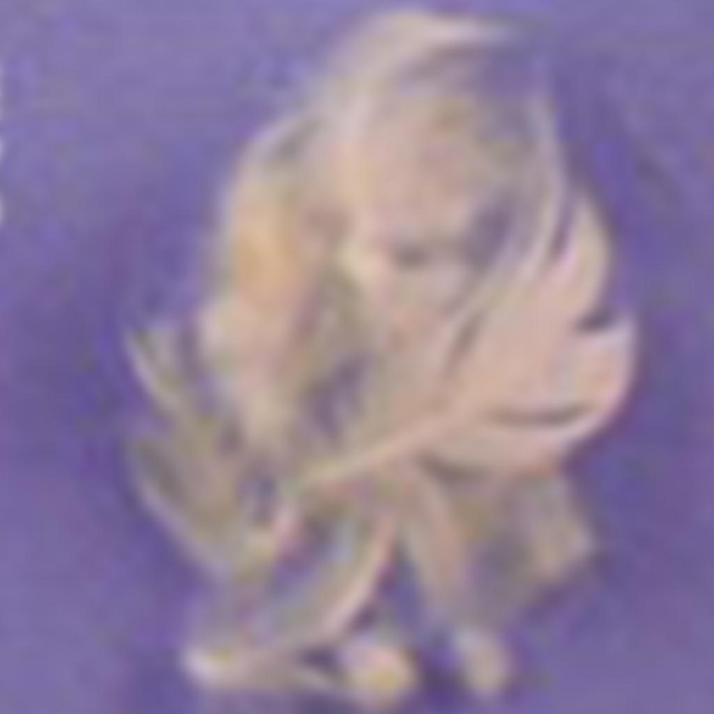 Mélange 9015 70% plume/30% conforel